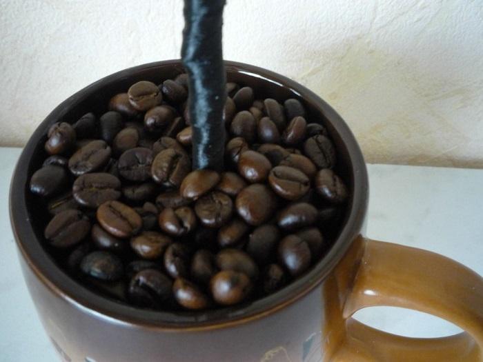 Кофейные зерна приклеены к гипсу