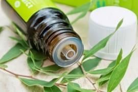 Польза масла чайного дерева и как его применяют