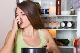 Неприятный запах в холодильнике и как его убрать