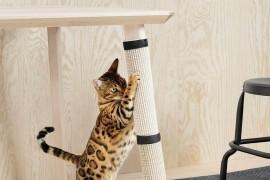 Когтеточка для кошек своими руками: пошаговый процесс изготовления разных моделей
