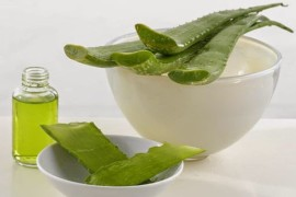 Польза сока каланхоэ и его применение